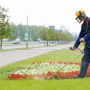 Manutentore del verde/giardiniere corso Pareto Salerno