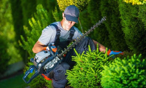 Manutentore del verde, giardiniere, corso formazione Pareto