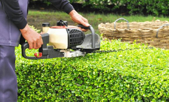 Manutentore del verde/giardiniere corso regione Campania